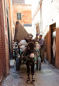 marrakech-0241